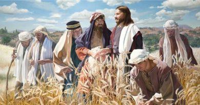 Sobota v Písme a apoštoli
